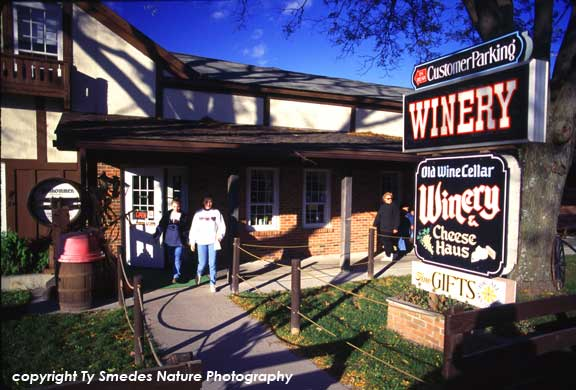 Amana Colonies Winery